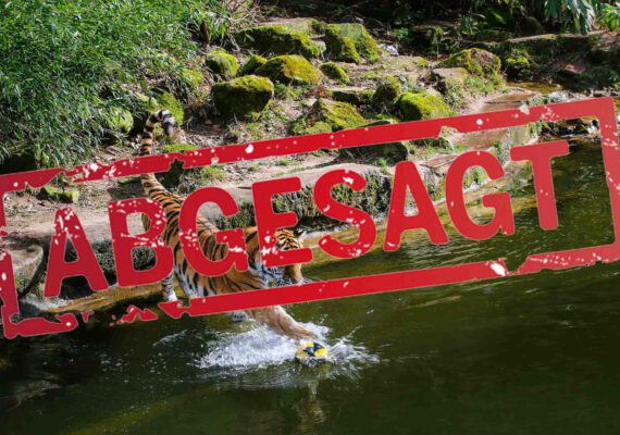 wufka-reisen-package-tiergarten-nuernberg-abgesagt
